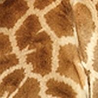 southern-giraffe-pattern