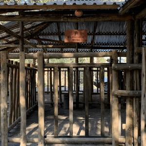 save-giraffe-orphanage