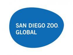 save-giraffes-san-diego-zoo